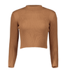 Womens High Neck Crop Jumper • Tan