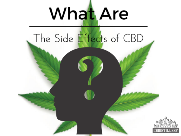 What Are The Side Effects of CBD