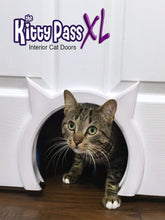 The Kitty Pass XL Interior Cat Door