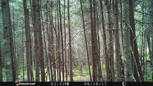 Stealth Cam QS12 Trail Camera 12 MP