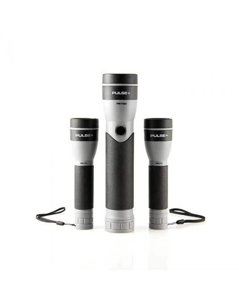 LuxPro LED Flashlight Pack
