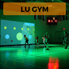 Interactive Fitness Games Buying Guide, Lu Gym, Lu Playground