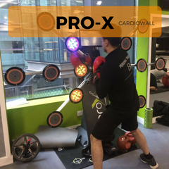 Exergame Buyer Guide, pro-x, cardiowall, reaction training