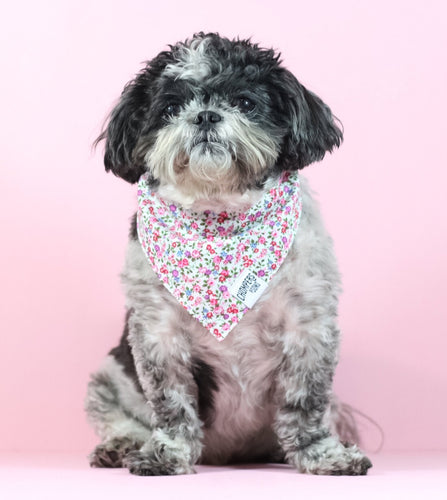 The Rosie Bandana