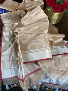 Pure Chanderi Silk - Light Mocha Eknaliya Woven
