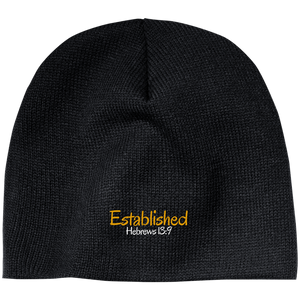 Established 3 CP91 100% Acrylic Beanie