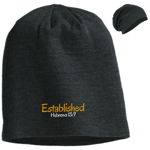 Established 3 DT618 District Slouch Beanie
