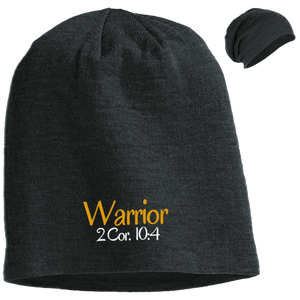 Warrior 3 DT618 District Slouch Beanie