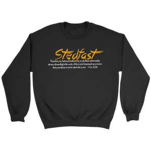 Stedfast Collection 2