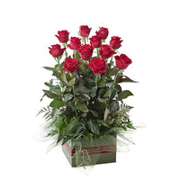 12 Roses in a floral box