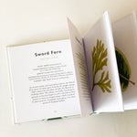 The Little Guide to Leaves Book