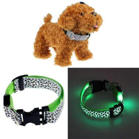 Dog Puppy Fluorescent Choker-Pet Collar Puppy Choker-Amboo MarKt Store
