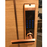 4 in 1 function Smart WiFi keypad door lock Model#313C-RG
