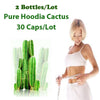 Image of 60 Days Use Pure Hoodia Extract - Control Appetite