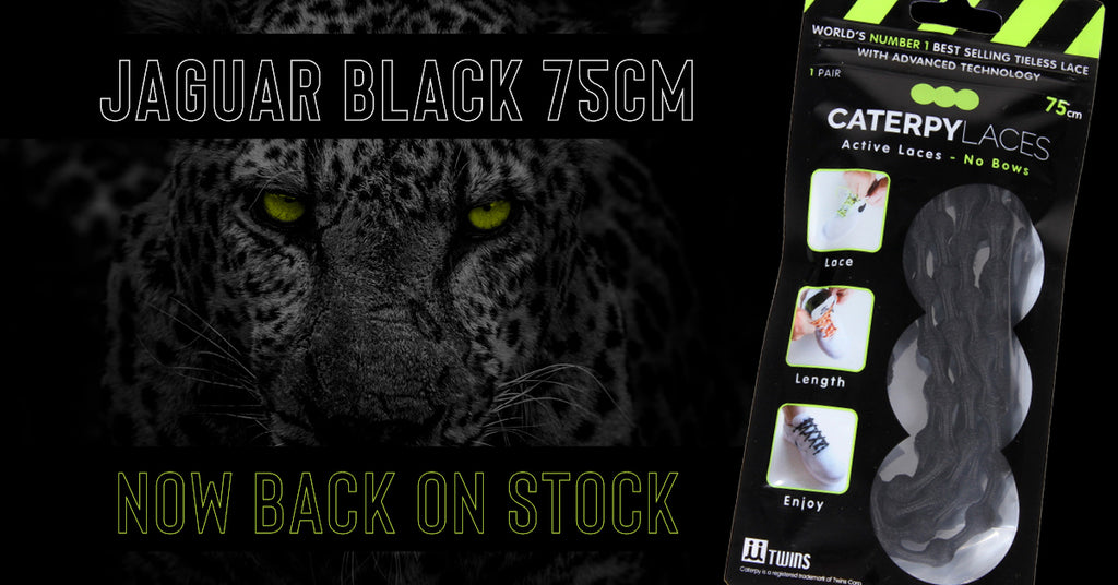 BACK IN STOCK: Jaguar Black 75cm