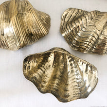 Brass Clam Shell