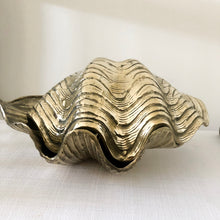 Brass Clam Shell {Large}
