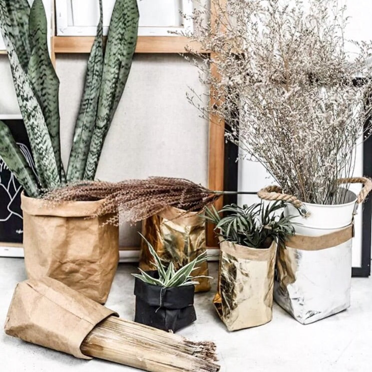 Eco Friendly Pot Plant Holder