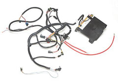 RXV Electric Harness Assembly