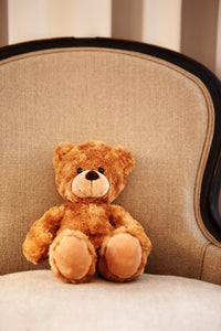 Diplomat Teddy Bear Small