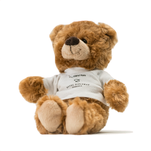 Diplomat Teddy Bear Large
