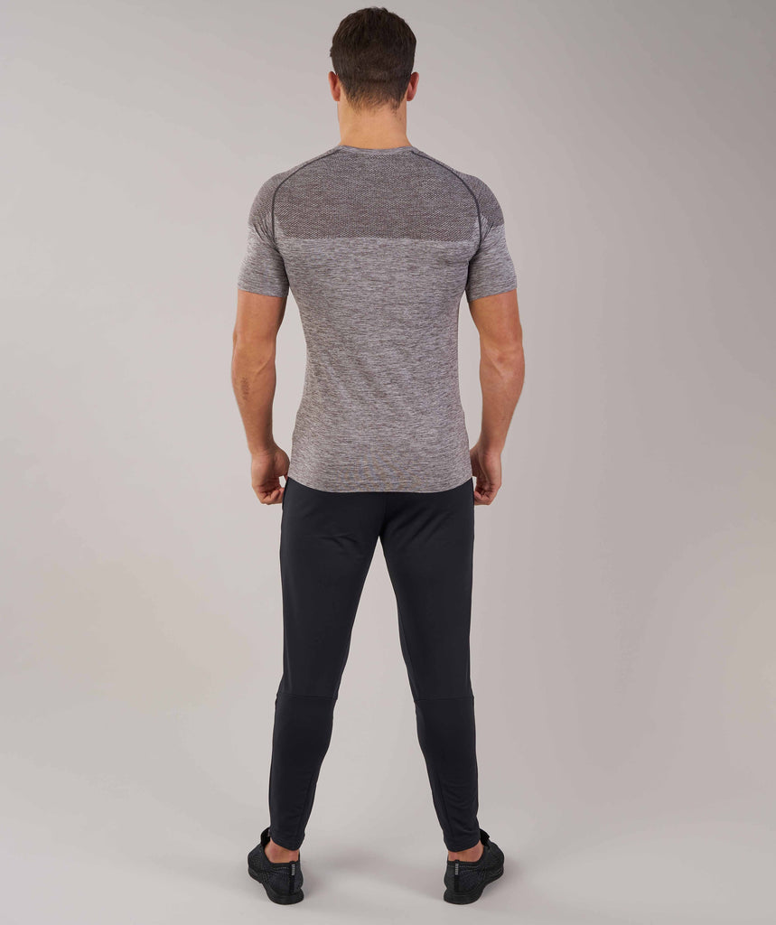 Gymshark Phantom Seamless T-Shirt - Slate Grey Marl 2