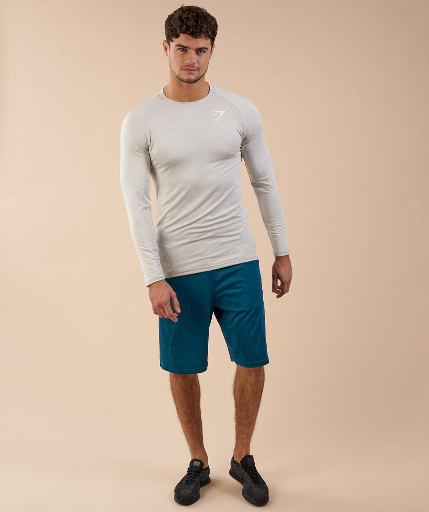 Gymshark Apex Long Sleeve T-Shirt - Stone Marl 1