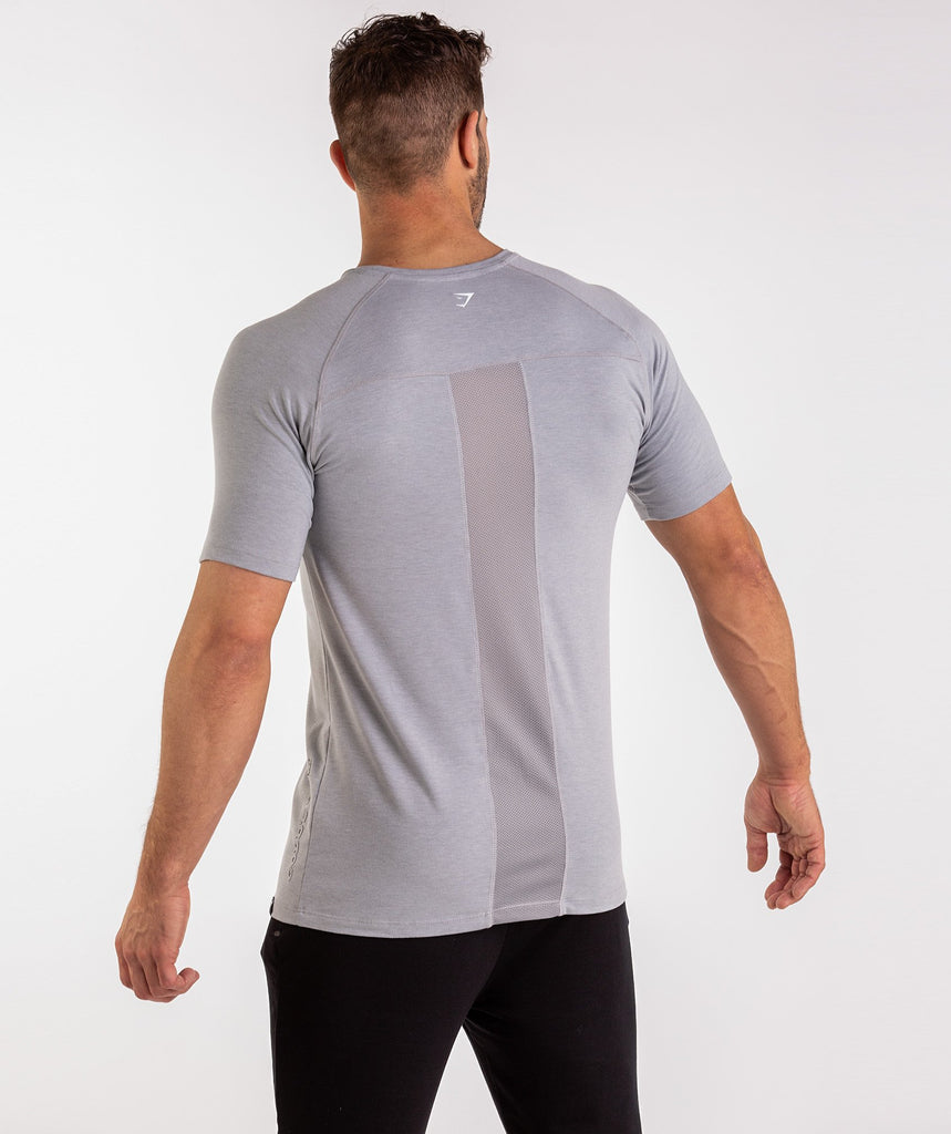 Gymshark Golds Gym T-Shirt - Light Grey 1