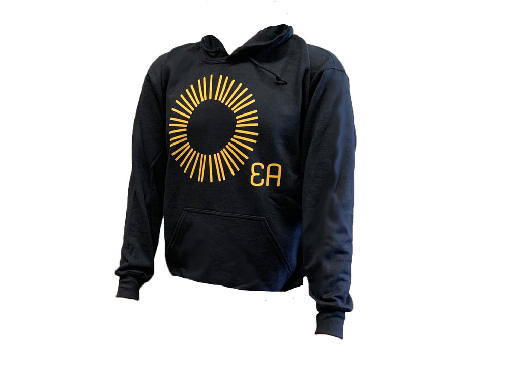 Education Alternatives Sun Hoodie