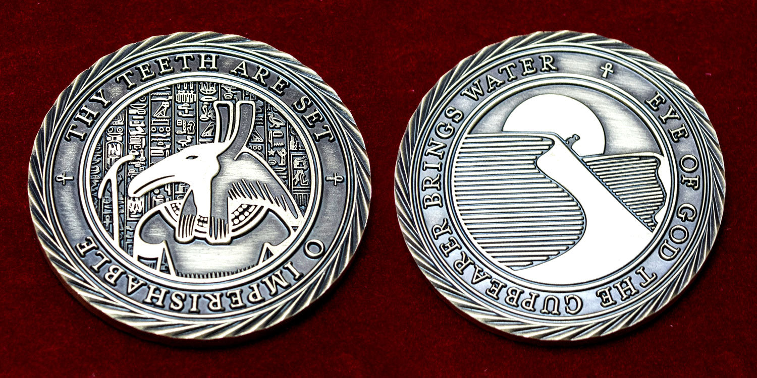 Challenge Coin - Hunt for the Forgotten Tomb