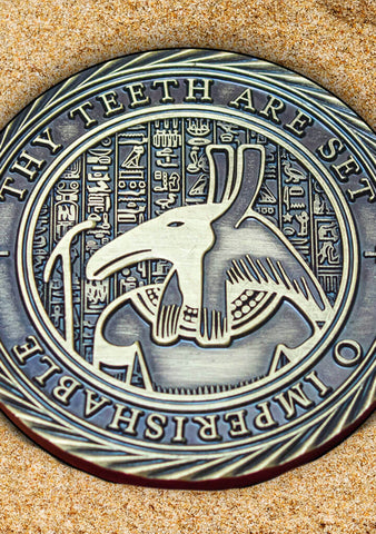 Challenge Coin - Hunt for the Forgotten Tomb - Mysterious Package Company