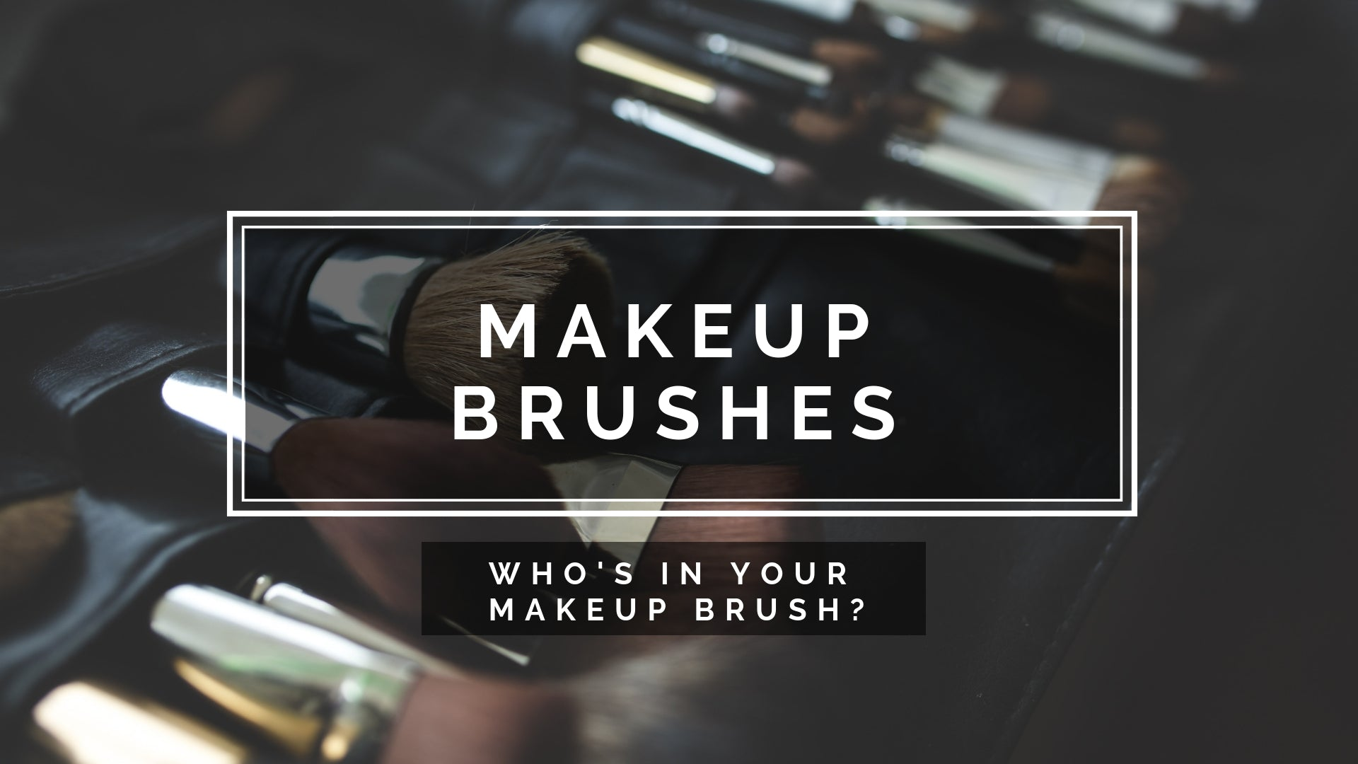 Makeup Brushes - Who's in your makeup brush?