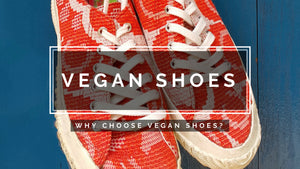 VEGAN SHOES - why choose vegan shoes?