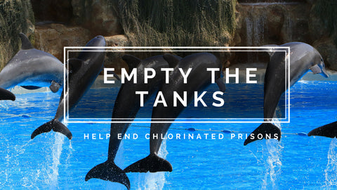 Empty the tanks title, image of dolphins