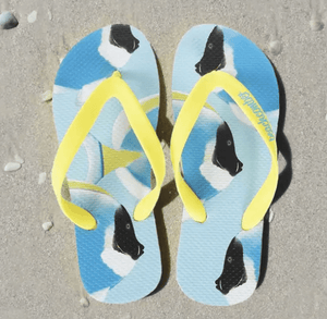 Beachcomber Flip Flops - Powder Blue Tangs