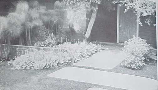 ENTRYWAYS AND FRONT GARDENS,  A SUNSET BOOK (1961)