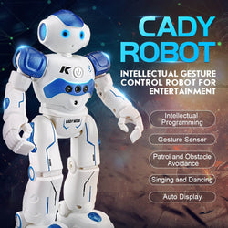 Intelligent Humanoid Robot - Remote Control Toy