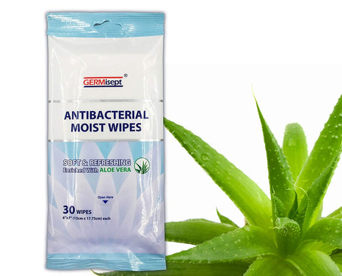 Image of Antibacterial Hand Sanitizing Soft Moist Wipes With Clean Refreshing Aloe Vera, Portable,
