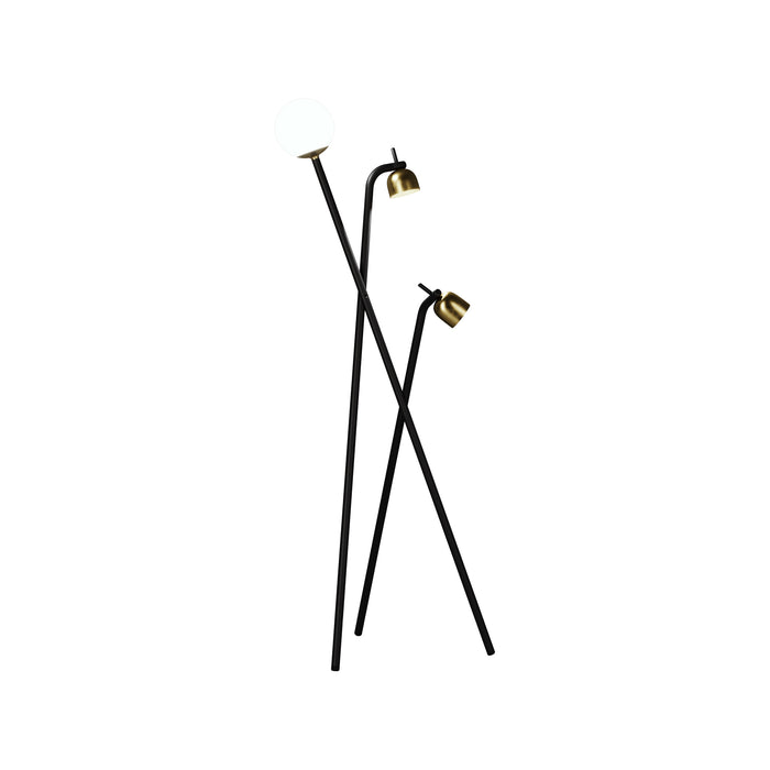 TRIPOD Floor Lamp by Front Design for Fontana Arte