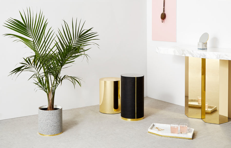 RUBBER PLANTER by Arielle Assouline-Lichten for Slash Objects