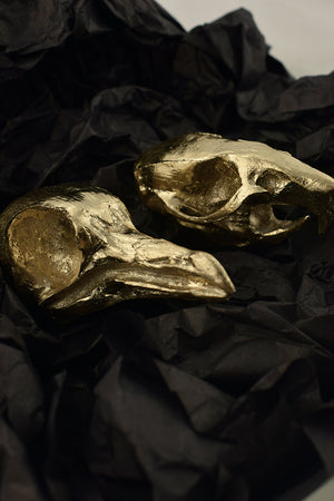 gift box containing gold rat skull and gold pigeon skull