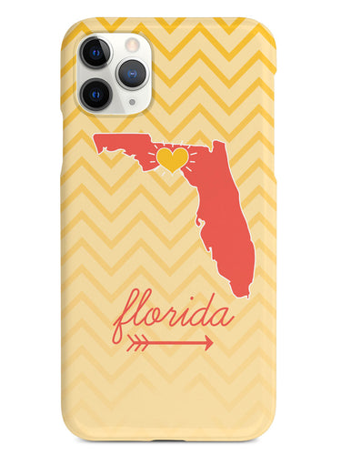 Florida Chevron Pattern State Case