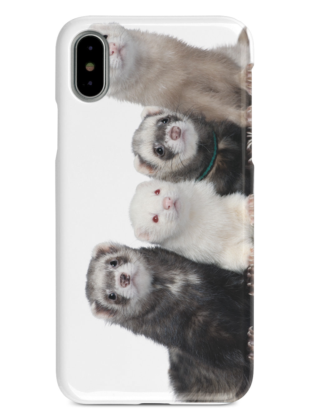 Ferrets Animals Humor Funny  Case