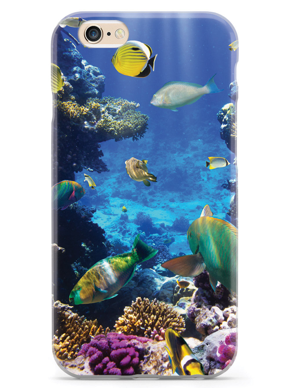 Tropical Fish Case