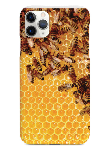 Honey Bees - Real Life Case