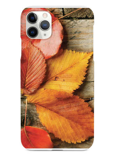 Autumn Leaves Texture Case