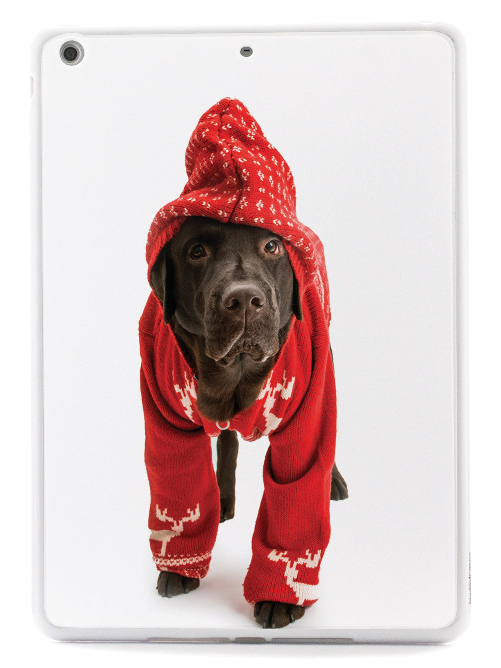 Cute Labrador in Christmas Sweater Case