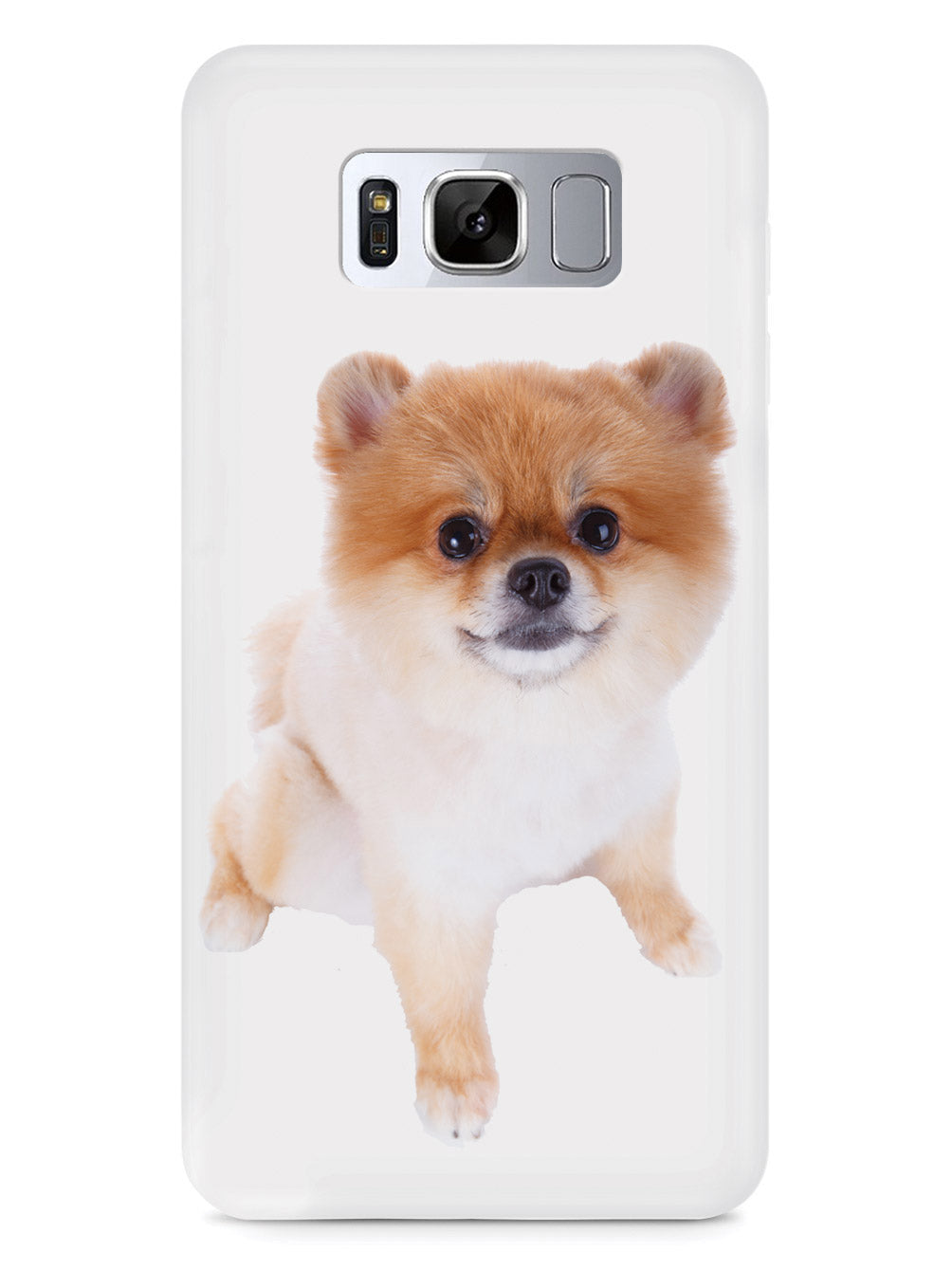 Short-haired Pomeranian Case
