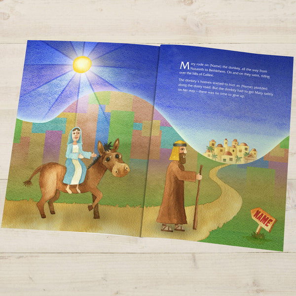 The Little Donkey and the Nativity Story - Mary Riding On Her Donkey