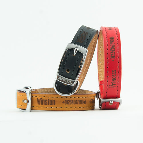 Personalised Dog Puppy Collars, Ancol Heritage Highest Quality Leather, Leads and Handloop